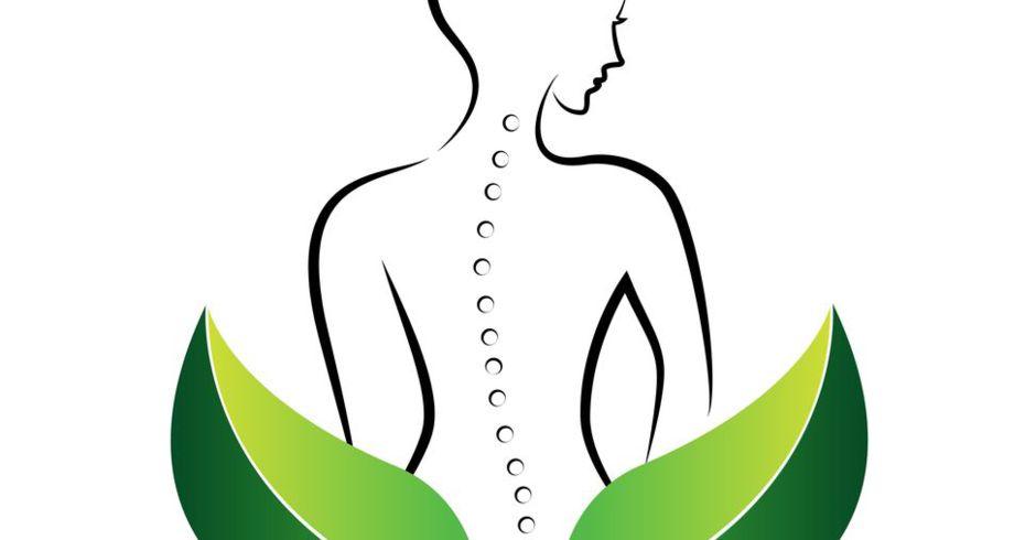 Ostéopathe, Grasse, Saint Cézaire sur Siagne, Peymeinade, Le Tignet, Montauroux, Fayence